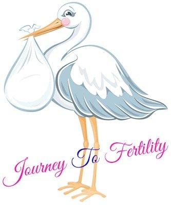 stork - journey to fertility