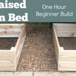 DIY Raised Garden Bed: Beginner Level