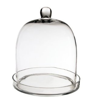 Glass Cloche Bell Dome with Tray