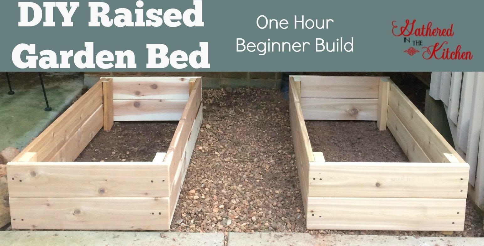 Diy Raised Garden Bed Beginner Level