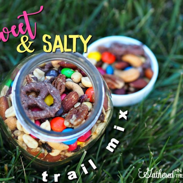 Sweet & Salty Trail Mix – Perfect for Traveling