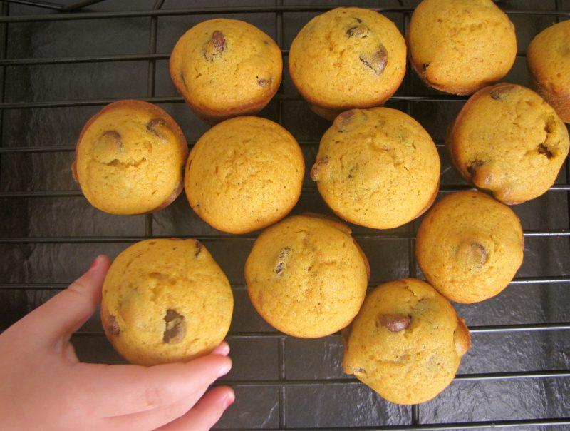 hand grabbing Mini Pumpkin Chocolate Chip Muffins