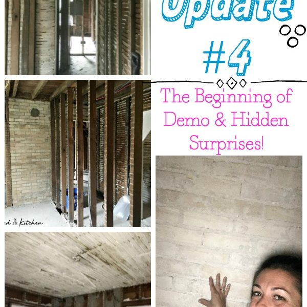 House Fire Update #4: The Beginning of Demo & Hidden Surprises!