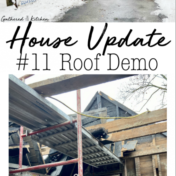 House Update #11: Roof Demo