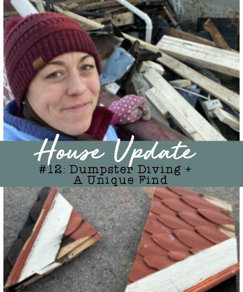 House Update #12 – Dumpster Diving + A Unique Find