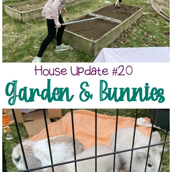 House Update #20 Garden & Bunnies