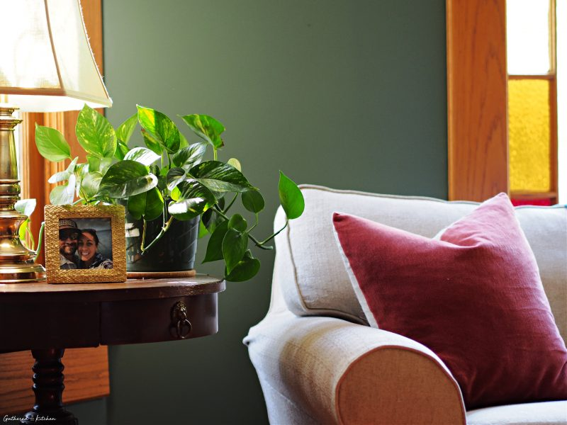 pothos plant on a side table next to a sofa