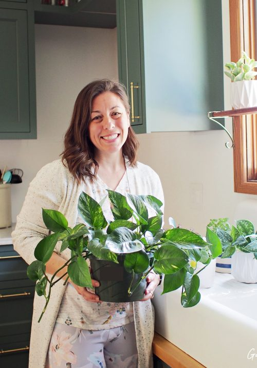 stephanie bruce from gathered in the kitchen at kitchen sink caring for plants