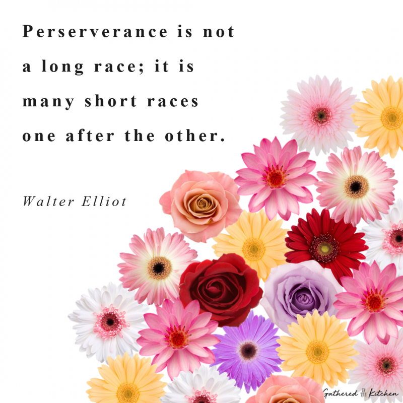 Perserverance is not a long race; it is many short races one after the other.  Walter Elliot