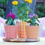 How to use paint markers on terra cotta flower pots