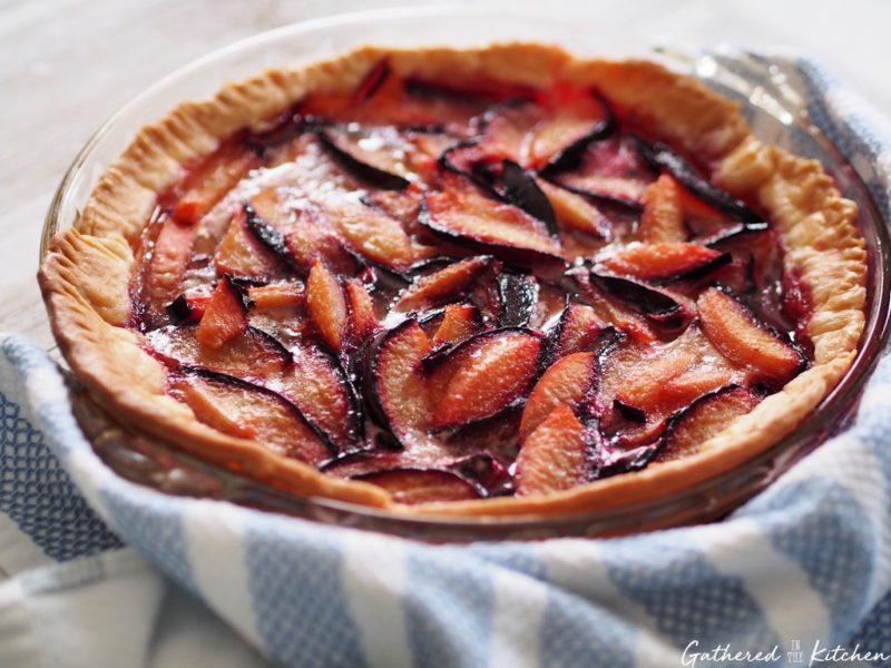 purple plum pie