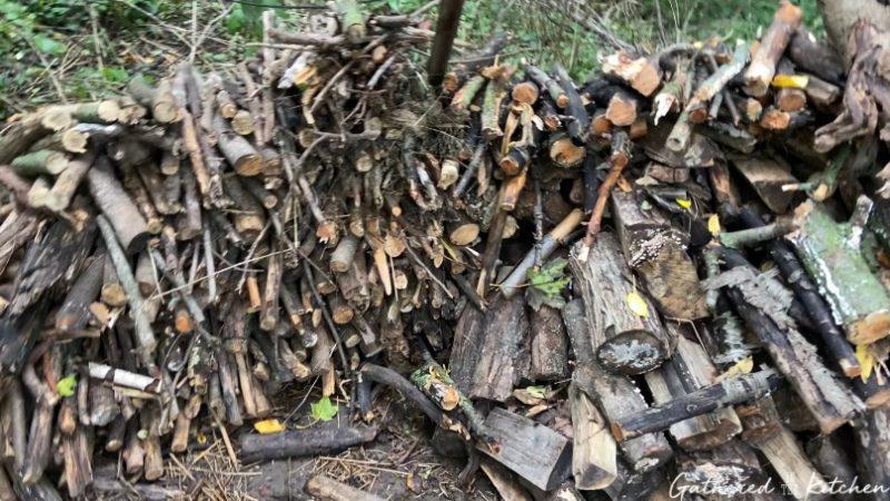 pile of wood in yard